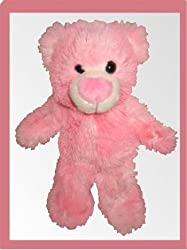 "Teenie Teddies Two-Tone Love Bear 7"" - Make Your Own Stuffed Animal Kit"