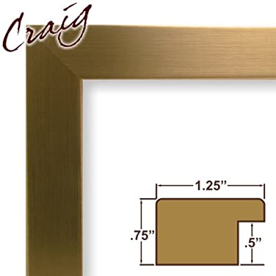 21x35 Custom Picture Frame / Poster Frame 1.25 Wide Complete Champagne Stainless Frame (26963)