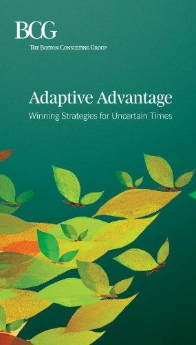 uncertainties in strategy essay