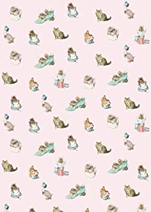 Beatrix Potter Jemima Puddle-Duck Sheet of Gift Wrap and Gift Tag