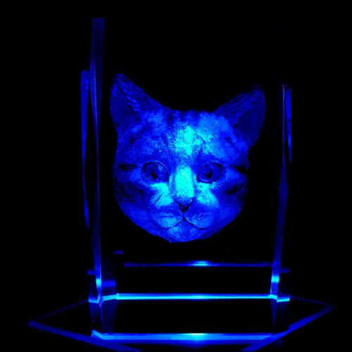 Cat Face 3D Laser Etched Crystal + Rotating Display Light Base With 7 Multi Color Led'S