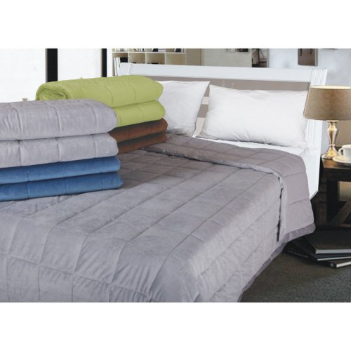 All-Season Reversible Down Alternative Micro Plush Blanket Color: Sage, Size: King front-1058156