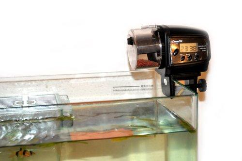distributeur automatique de nourriture poisson aquarium fish feed 16 99. Black Bedroom Furniture Sets. Home Design Ideas