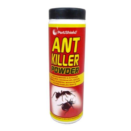 pestshield-ant-killer-polvere-scarafaggi-mosche-coleotteri-essere-vespe
