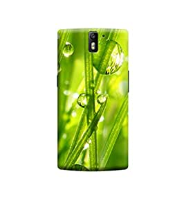 EPICCASE Premium Printed Back Case Cover With Full protection For OnePlus One (Designer Case)