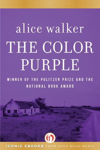 essay on the book the color purple