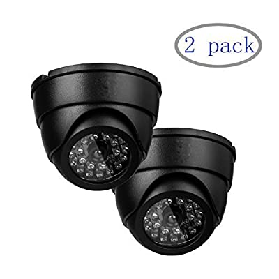 TLT Pack of 2 Fake Dummy Security Camera Imitation Dome Surveillance Camera with 1 Flashing Light DZ010
