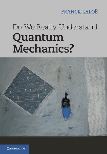 Do We Really Understand Quantum Mechanics? Hardback