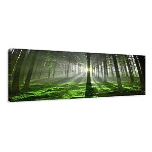 Visario 5706 - Fotografía sobre lienzo (120 x 40 cm), diseño de bosque