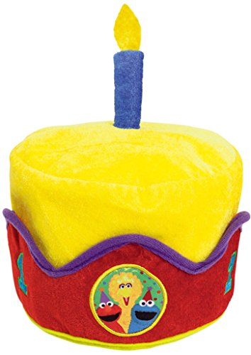 Sesame Street 1st Birthday Hat