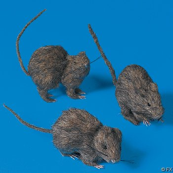 Realistic Hairy Rats For Halloween - 3 Piece Set - 5 Inches Long