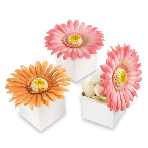 kateaspen Daisy Delight Gerbera Daisy Favor Box, Hot pink (Pack of 24)