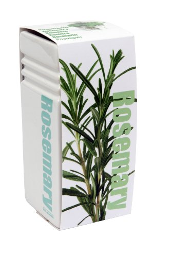 GreenBrokers Trendy Square Ceramic Vase Grow Your Own Herbs Kit - Rosemary