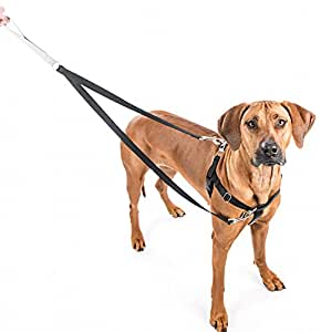 Amazon Com Freedom No Pull Dog Harness And Leash