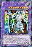 遊戯王カード 【ジェムナイトマスター・ダイヤ】【シークレット】 DT14-JP033-SI 《破滅の邪龍 ウロボロス!!》
