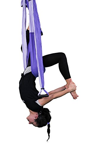 YOGABODY-Naturals-Yoga-Trapeze-Yoga-SwingSlingInversion-Tool-Purple