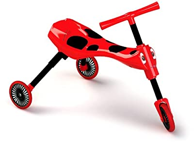 Scuttlebug Beetle (Red and Black)
