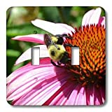 Patricia Sanders Flowers - Bumble Bee and Purple Coneflower - Light Switch Covers - double toggle switch ~ Patricia Sanders