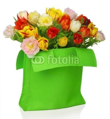 "Wallmonkeys Peel and Stick Wall Decals - Green Bag with Beautiful Tulip Bouquet . Isolated on White - 48""H x 45""W Removable Graphic"