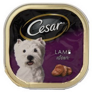 Cesar Canned Dog Food Review