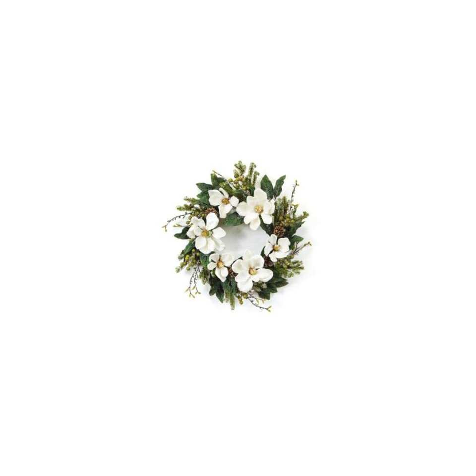 Pack of 2 Winter Solace Iced Magnolia Artificial Christmas Wreaths 20   Unlit