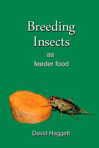 Breeding Insects as feeder food [Haggett, David] (Tapa Blanda)