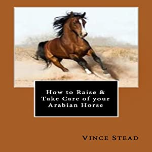How to Raise & Take Care of your Arabian Horse | [Vince Stead]