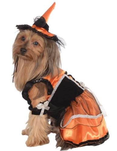 Halloween Costumes Item - Cat & Dog Costume Orange Witch Small