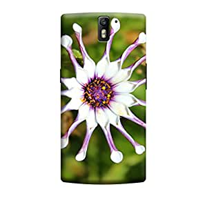 iShell Premium Printed Mobile Back Case Cover With Full protection For OnePlus One (Designer Case)