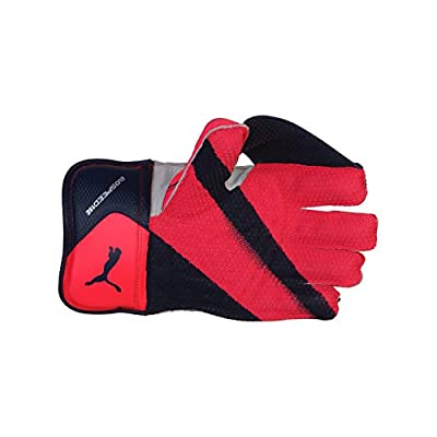 Puma EvoSpeed 1 SE Wicket Keeping Gloves- MEN