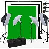 2500W 5500K Kit complet de studio photo professionnel Kit d'éclairage continu de Studio + 4 lampes + 2 trépied + 2 parapluies + tissu de fond (Blanc, Noir, Vert) + Sac de transport