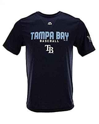 Tampa Bay Rays Majestic Heather Navy Take The Field Performance Tee Shirt
