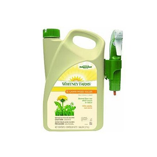 Whitney Farms Lawn Weed Killer, 1-Gallon
