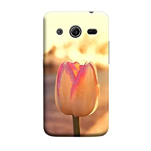 Ebby Premium Printed Mobile Back Case Cover With Full protection For Samsung Core 2 (Designer Case)