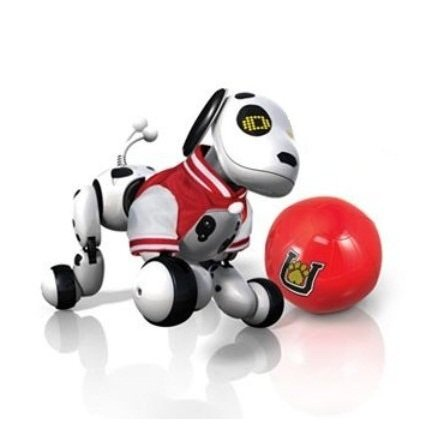 Zoomer Dalmatian Gift Set with Red Varsity Jacket and Ball
