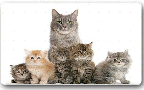 Cat With Kittens Pics Doormat Custom Machine-Washable Door Mat Indoor/Outdoor Doormat 23.6(L) x 15.7(W) Inch (Kitten Pics compare prices)