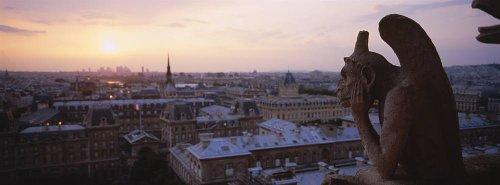 Walls 360 Peel & Stick Wall Murals: Chimera Sculpture Notre Dame Paris (36 in x 12 in)