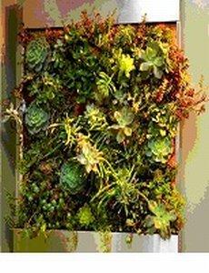 Moving Edible Living Wall Unit