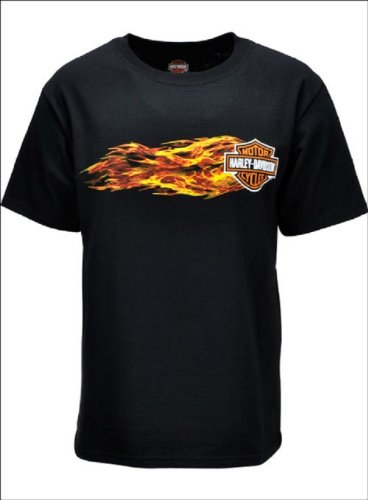 Harley-Davidson® Men's Flaming Screamin' Eagle T-Shirt. Silk Screened Graphics. HARLMT01300