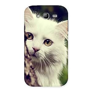 Ajay Enterprises Brave Hiding Cat Multicolor Back Case Cover for Galaxy Grand Neo Plus