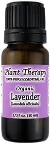 Organic Lavender ( Lavandula officina…