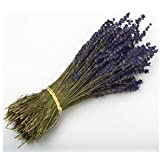LAVENDER BUNCH 250 STEMS DRIED FLOWERS 30CM WEDDING FAVOURS OR DECORATIONS