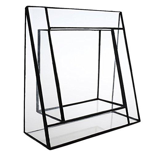 phenovo-dreiecksform-glasterrarium-gartenhaus-gewaechshaus-saftig-gefass-gewinkelt-terrarium-aufma