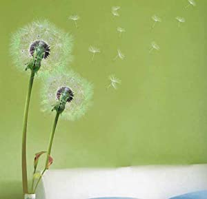 Stylish Flying Dandelion Stylish Grass Wall Stickers Home/Room Decors Mural Art Decals Adhesive Decorative Transparent by ECFACTOP