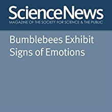 Bumblebees Exhibit Signs of Emotions Other Auteur(s) : Emily Underwood Narrateur(s) : Mark Moran