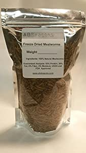 2.5 lbs Dried Mealworms for Fish Bluebirds Chickens Gliders ~40,000 Count (40oz)