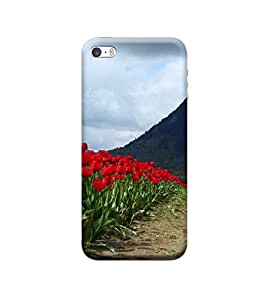 TransMute Premium Printed Back Case Cover With Full protection For Apple iPhone 5/5s/SE (Designer Case)
