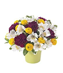 Clover - eshopclub Same Day Flower Delivery - Online Flower - Anniversary Flowers - Wedding Flowers Bouquets - Birthday Flowers - Send Flowers