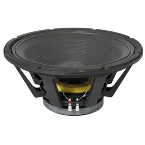 Podium Pro Pp183 18-Inch 1200 Watt Low Frequency Pro Audio Dj Pa Karaoke Band Replacement Subwoofer