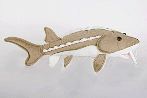 "1 X 10"" Sturgeon Fish Plush Stuffed Animal Toy by Cabin Critters"